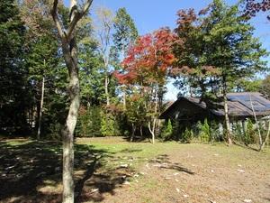 sakuragaoka12IMG_0411.JPG