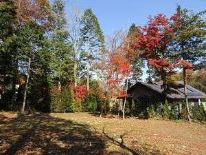 sakuragaoka12IMG_0432.JPG