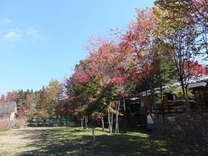 sakuragaoka2eDSCF2314.JPG