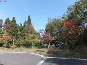 sakuragaoka2iDSCF2267.JPG
