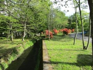 sakuragaokaIMG_1388.JPG