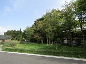 sakuragaokaeIMG_0315.JPG