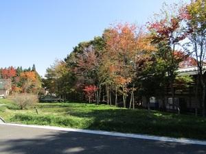 sakuragaokaeIMG_0376.JPG