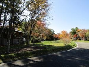 sakuragaokaeIMG_0808.JPG