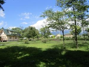 sakuragaokaiIMG_0294.JPG