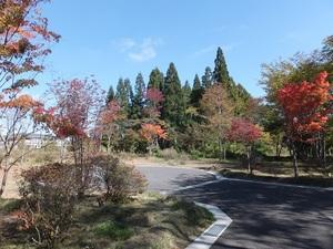 sakuragaokavillage2DSCF2310.JPG