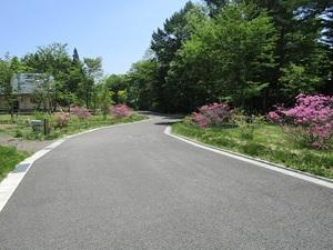sakuragaokavillageIMG_0122.JPG
