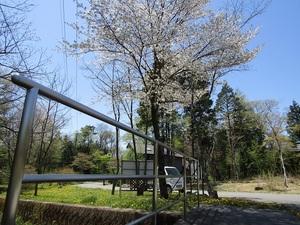 sakuragaokavillageIMG_0534.JPG