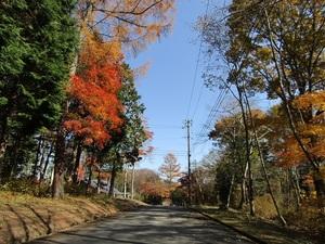 wsakuragaokavillageIMG_0431.JPG